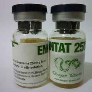 Kopen Testosteron enanthate - Enanthat 250 Prijs in Nederland